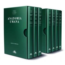 TRATTATO DI ANATOMIA TOPOGRAFICA - COFANETTO 7 VOLUMI