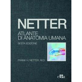 ATLANTE DI ANATOMIA UMANA di Netter + Domande d'esame